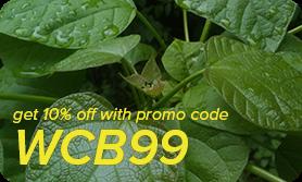 promo-code-featured-2